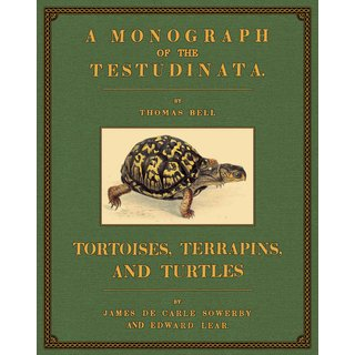 Tortoises, Terrapins and Turtles